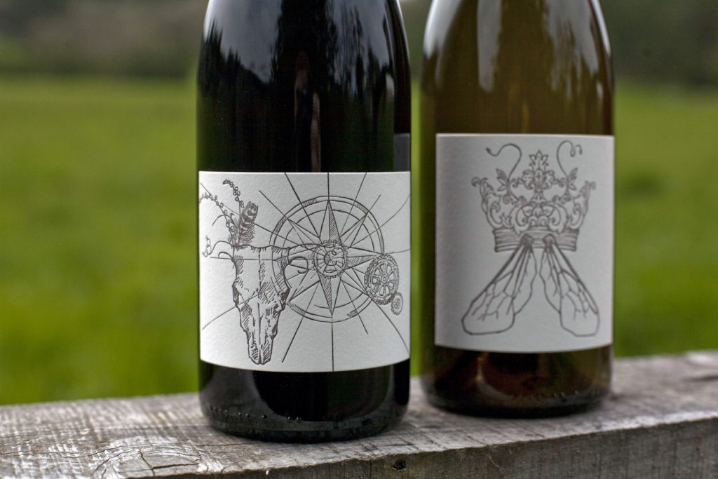 pinot noir of willamette valley oregon - clare carver big table farm